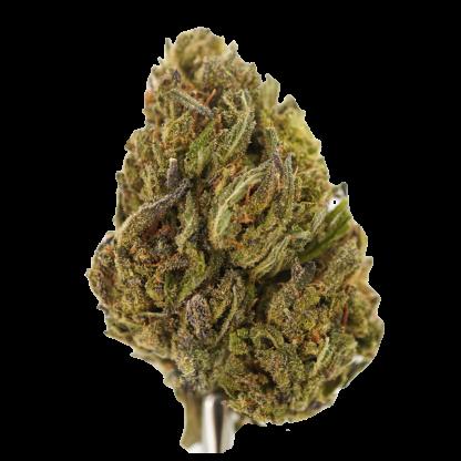 Purple Gas Hemp Flower